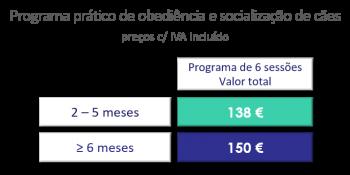 Socializaçao_200901