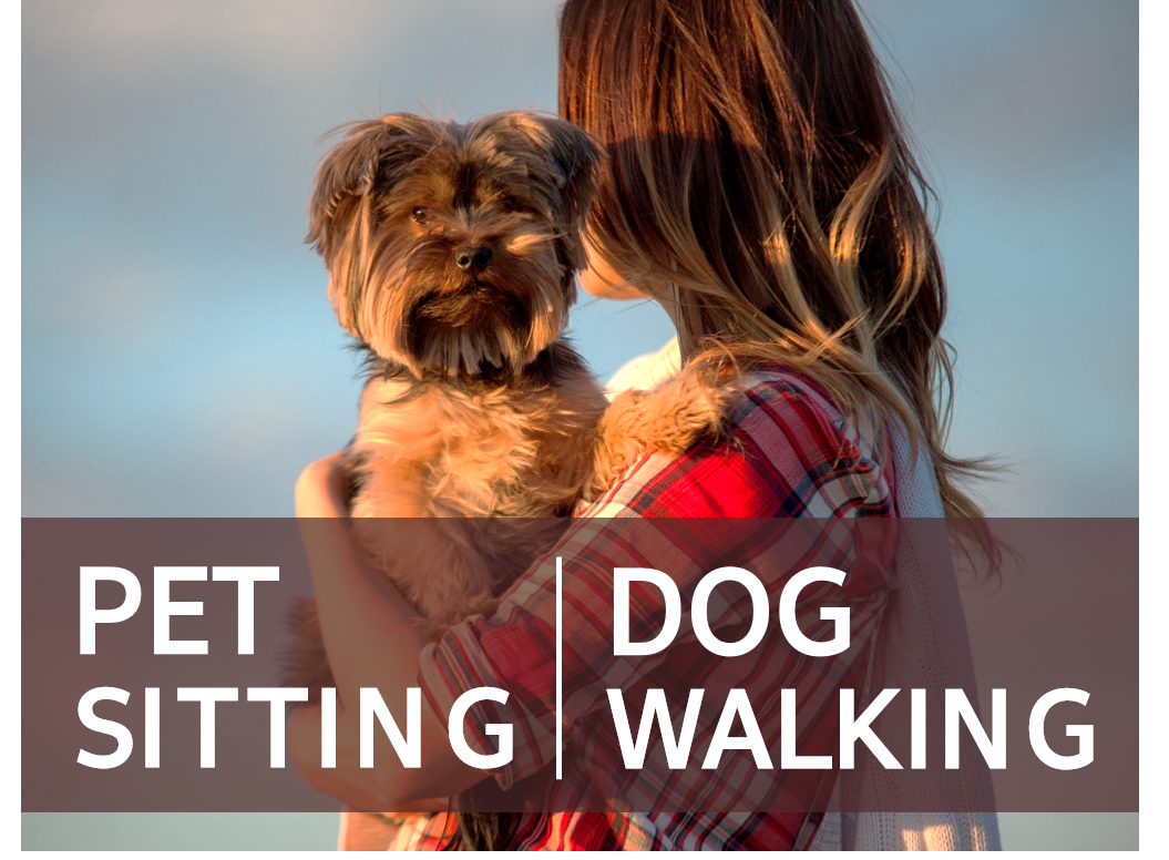 Petsitting+Dogwalking
