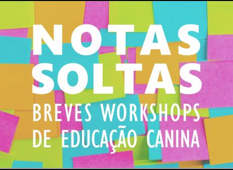 NSoltas-2019c